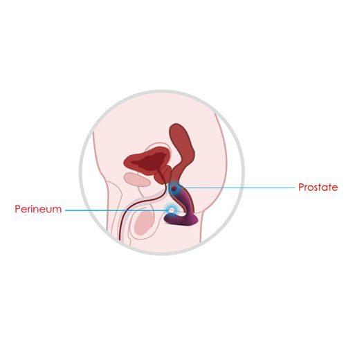 cum se foloseste masatorul pentru prostata vick